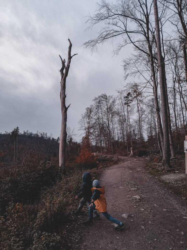 keltenrundwanderweg