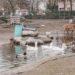 Tierpark Hattersheim